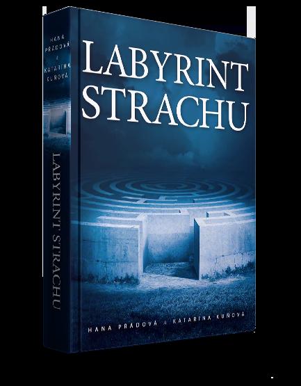 Obrázek knihy: Labyrint strachu