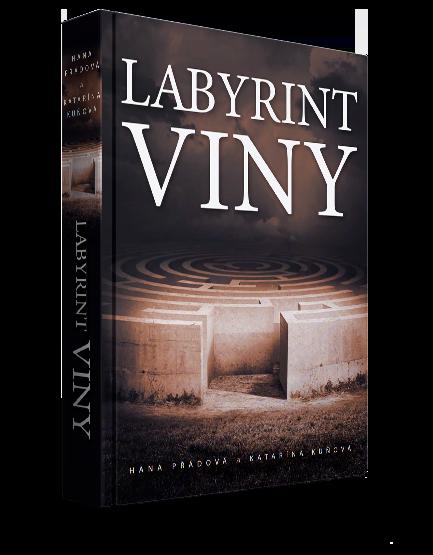 Obrázek knihy: Labyrint viny